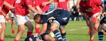 ok - folo rugby3